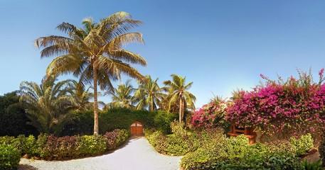 Beautiful garden with door to the beach in Sali, Mbour City, Senegal, Africa